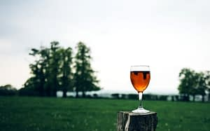 Orange wine on a post in front of a field